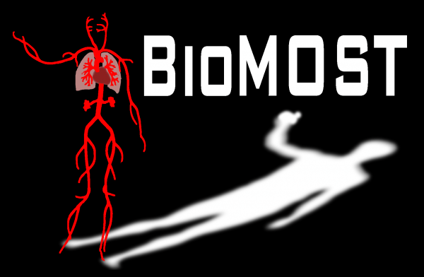 The mission of the BioMechanics of Soft Tissues (BioMOST) division is to contribute to the understanding, diagnosis, and treatment of diseases of the soft tissue structures in the human body by drawing upon principles in engineering mechanics. The division employs biomechanical experimentation, mathematical modeling, and computational simulations to address issues of interest in the cardiovascular and pulmonary systems.